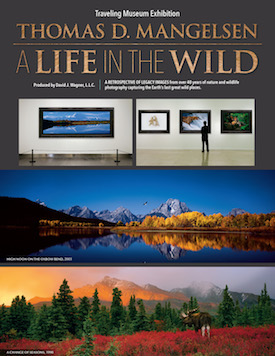 THOMAS D. MANGELSEN: A Life In The Wild Exhibition